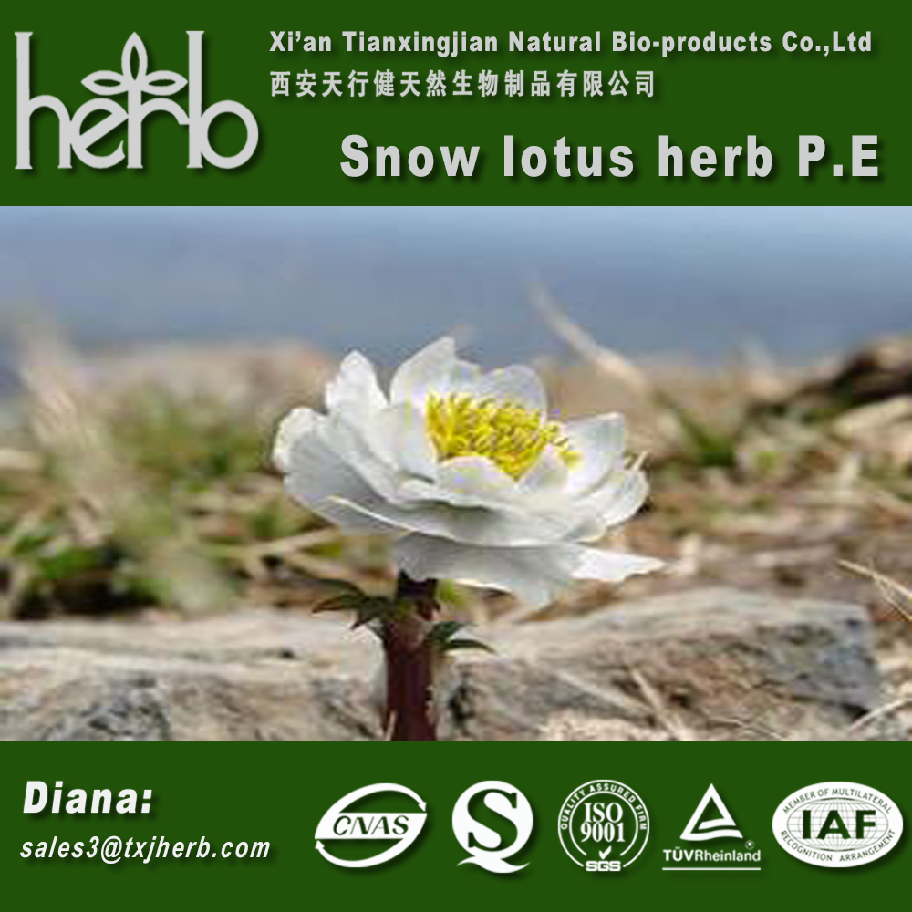 China Manufacturer High Quality Snow Lotus Herb Extract Buy Snow