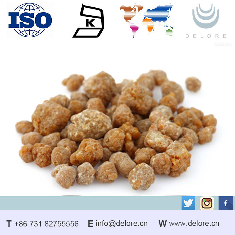 supply herbal extract 65% natural boswellia extracting in bulk