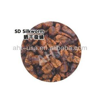 Sun Dried Silkworm Pupae