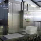 IQF Impingement tunnel freezer