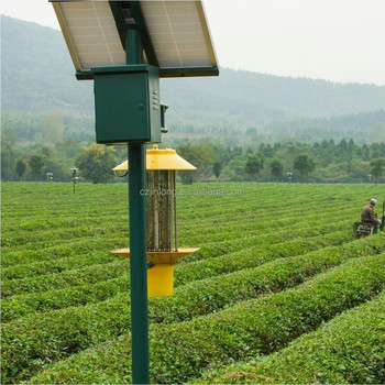 Solar Powered Insect Trap Buy Pest Control Light
