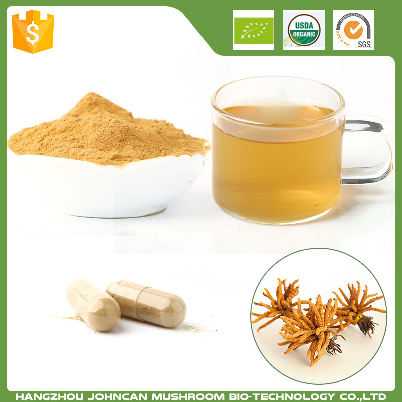 china suppliers cordyceps cs 4 extract