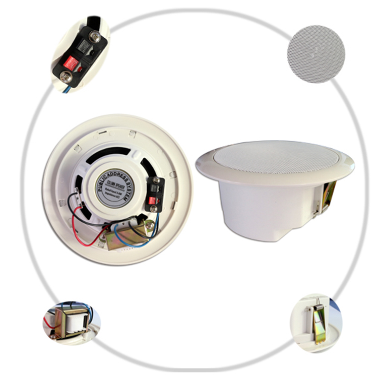 Mini 3W 6.5 inch portable outdoor speaker for ceiling with tamil video song download,car ceiling speaker with amplifier