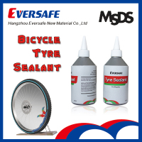 Hangzhou Eversafe Best Price Accessories Indian Market India Rickshaws Tyre Sealant (ESB200-W)