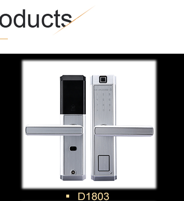 Cost-effective metal door black smart digital door lock