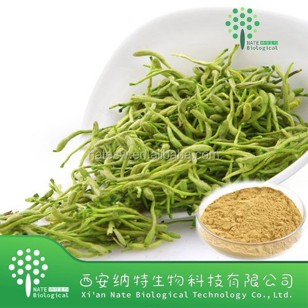 Natural Plant Extract Herb Honeysuckle lower extract