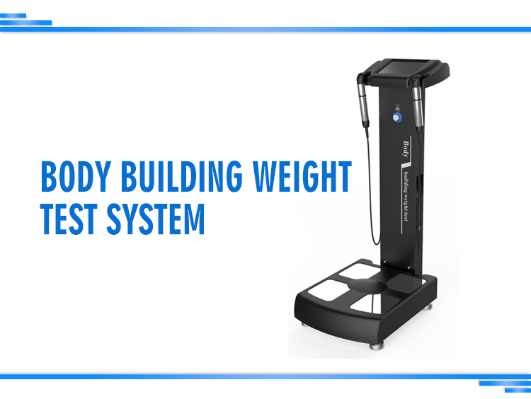 Sales 2020 HOT sale Professional body composition analysis machine with printer