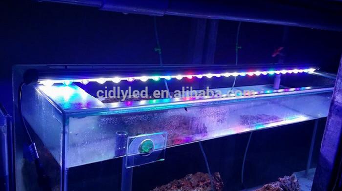 Marine Used Led Aqua Bar 60cm 2ft Coral Reef Led Aquarium Lights ...
