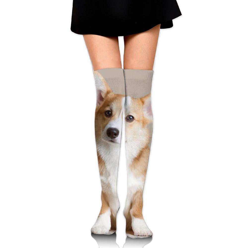 Mens athletic low cut Ankle sock Dog Corgi Animal Humor Short Fit Sock