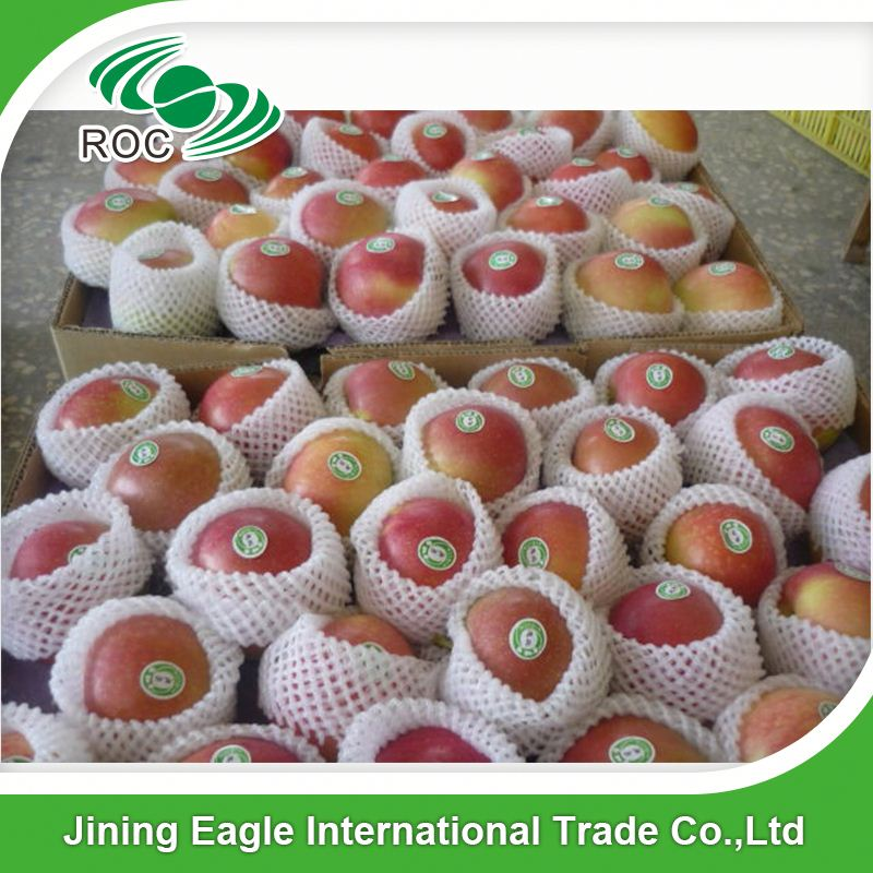 Bulk fresh organic Chinese sweet big gala apples