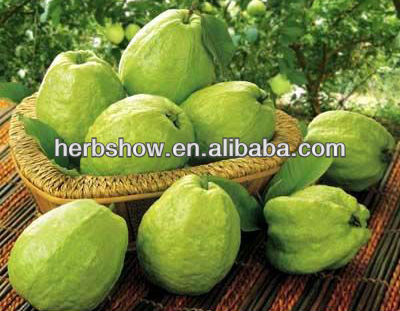 Guava fruit seeds for planting