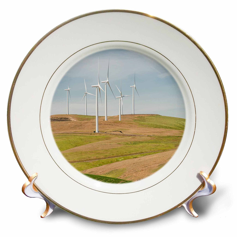 3dRose Danita Delimont - Palouse - Washington State, Palouse, wind turbines near Dodge Junction. - 8 inch Porcelain Plate (cp_251501_1)