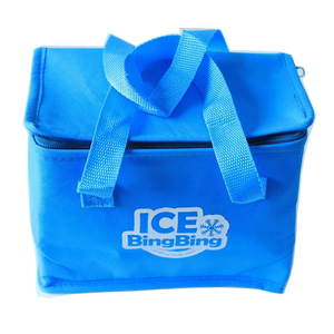 Portable Cool Tote Bags Fashion Lunch School Insulated Small Cooling Bag