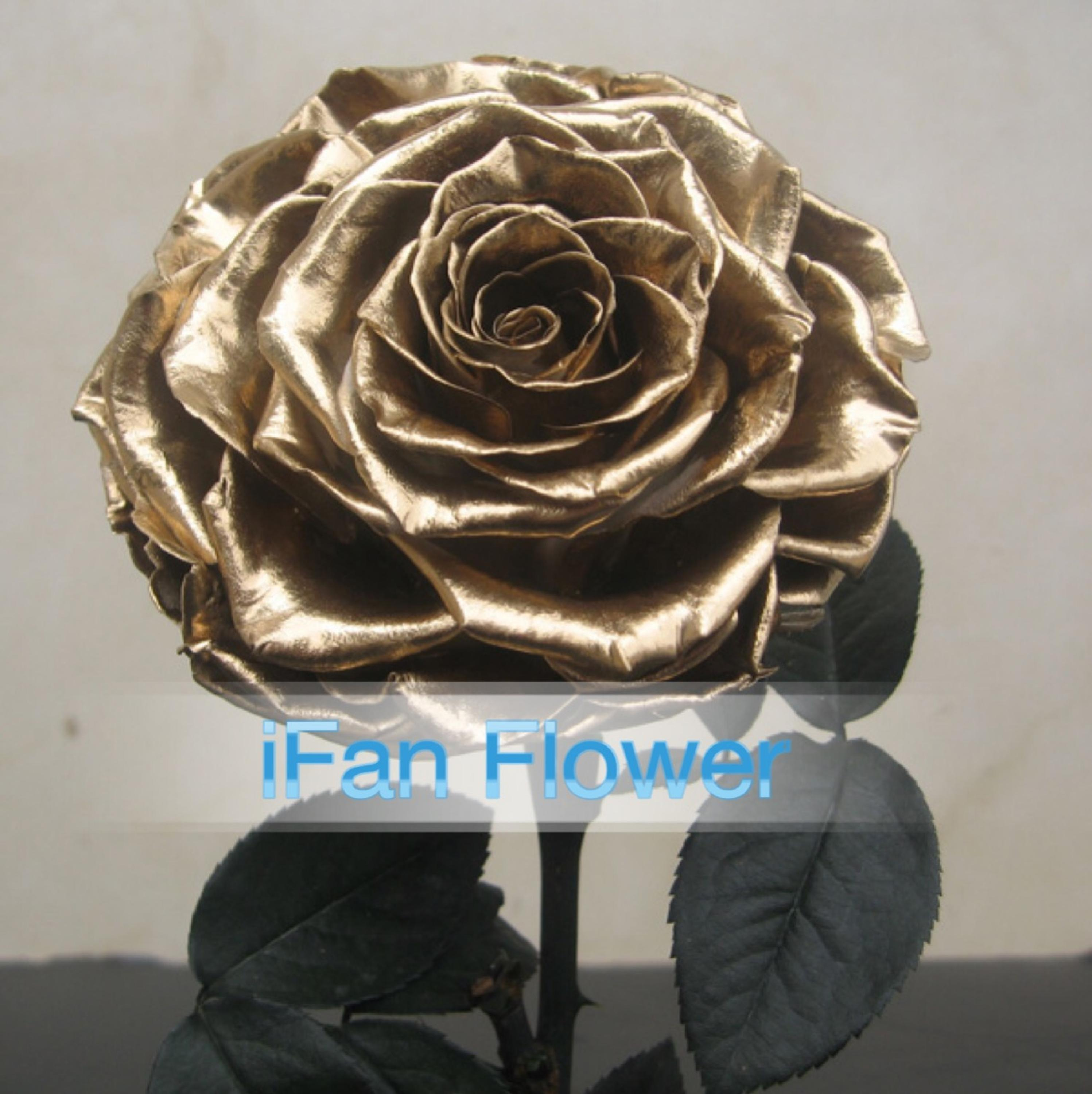 Alibaba Direct Exports Decoration Items Everlasting Golden Rose Flower In Glass Dried Flowers Preserved Wholesale