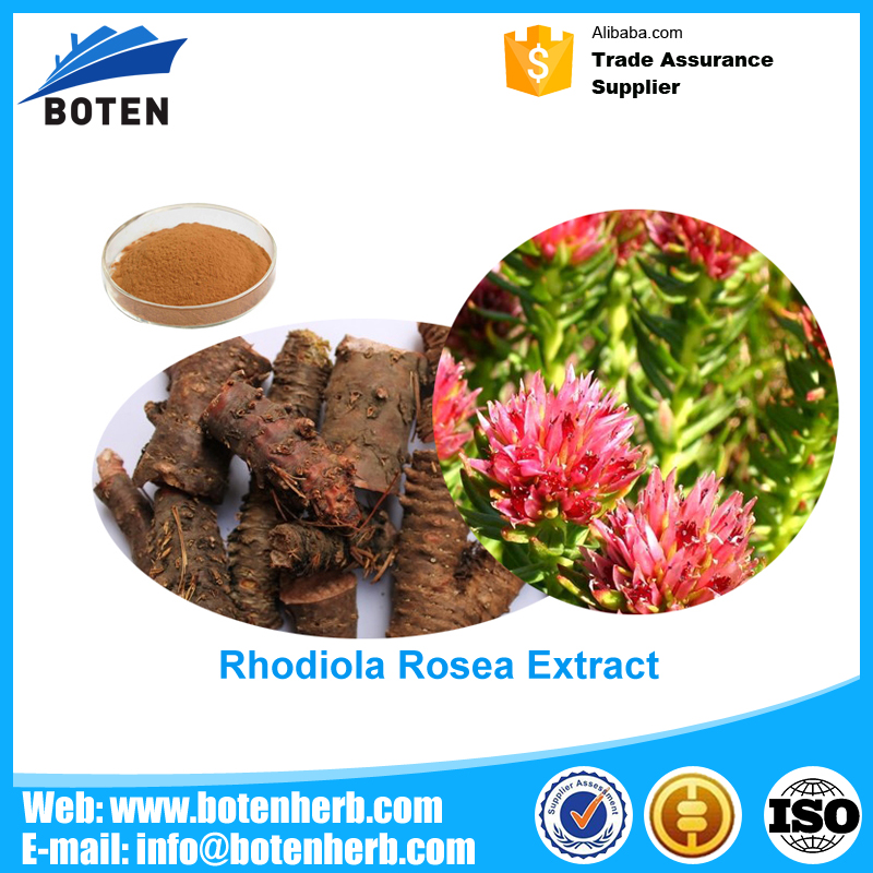 High quality machine grade Rhodiola rosea ext. With Long-term Service
