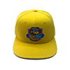 High Quality Custom Promotional Cotton Embroidery Baseball cap/Hat