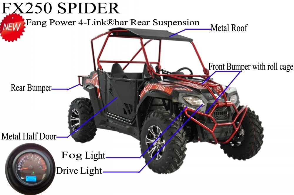 China Fang Power Fx250 Side By Side Kids Utv 250cc For Sale
