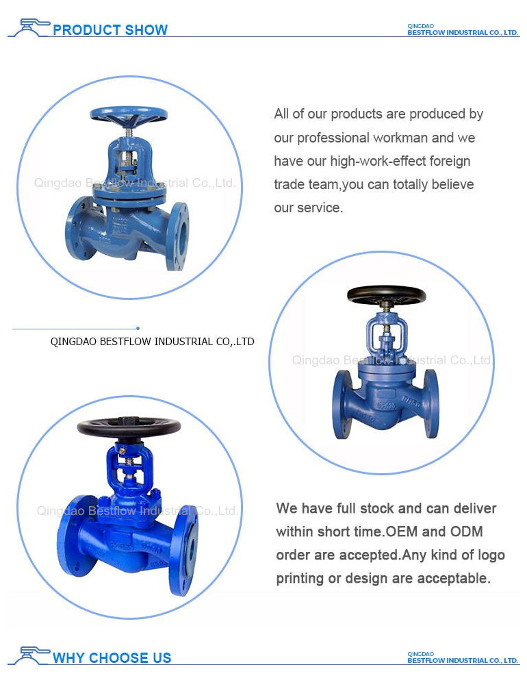 PN25 To Control Water Pressure Relief Valve Cast Steel Globe Valve