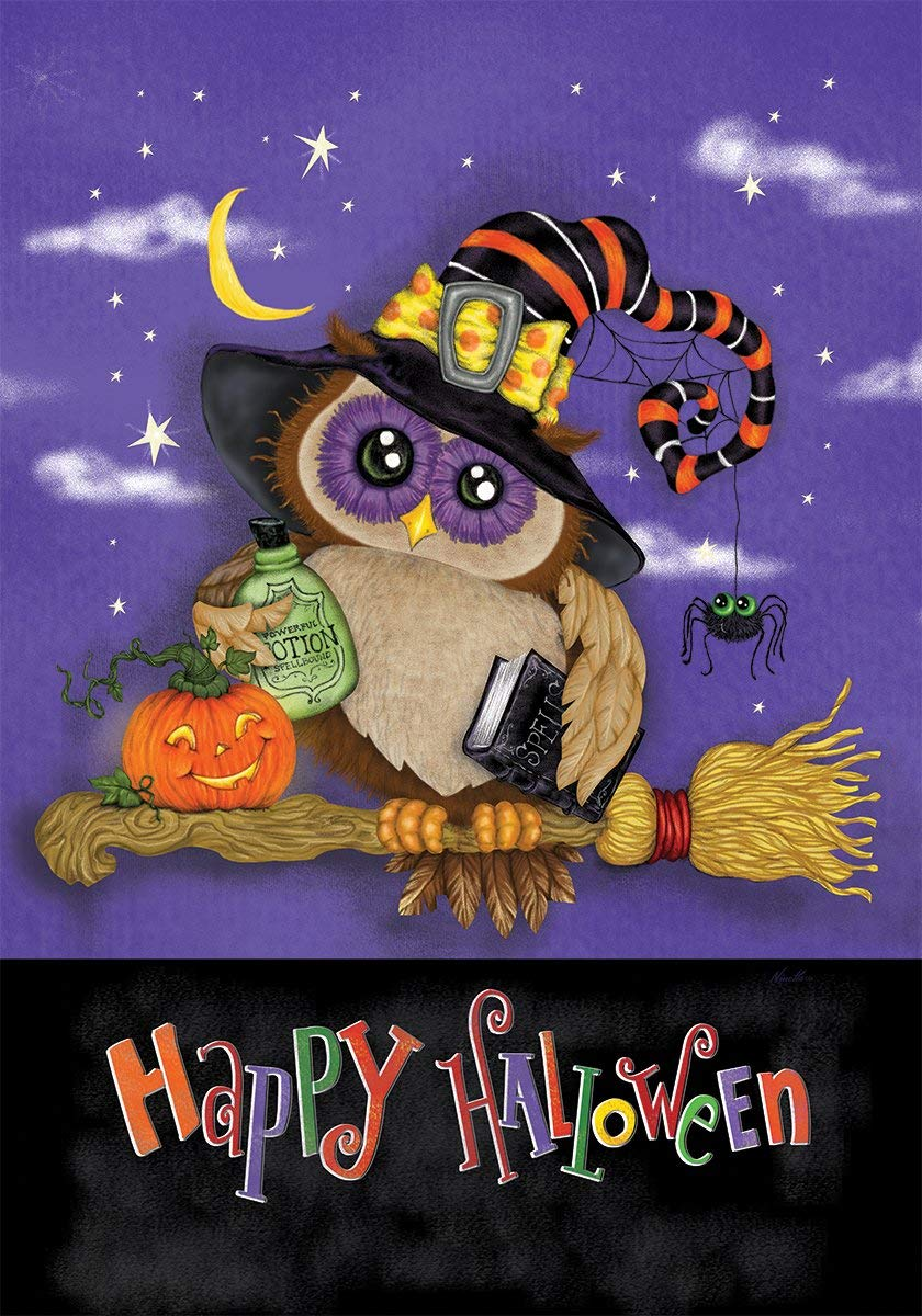 Custom Decor Halloween Owl - Standard Size, Decorative Double Sided, Licensed and Copyrighted Flag - Printed in the USA by Inc. - 28 Inch X 40 Inch approx. size