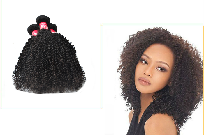 Noble Hair Style Afro Curly Hair Braids In Human Hair Extensions ...