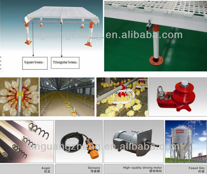 High standard Q235 steel Material and Chicken Use H-type chicken cage house