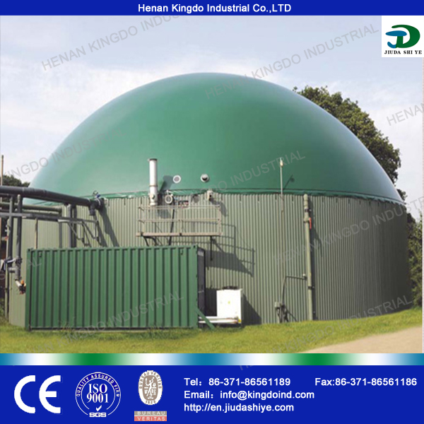 China 100m3 Biogas Digester, Home Biogas Generator with High Output