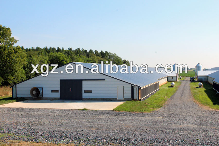 low price steel structure poultry shed construction with advanced automated equipments