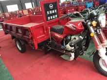 2015 Cargo Moped Gasoline Motorcycled cargo tricycle