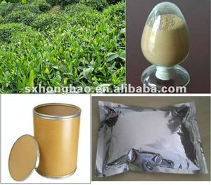 Good Quality Organic Green Tea Extract 20%-99% Theanine