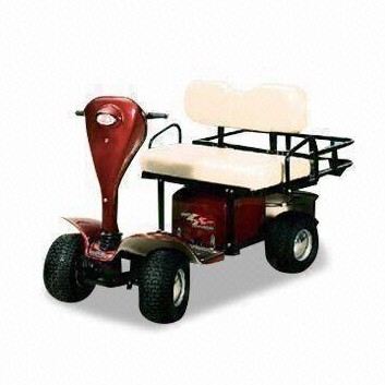 Mini Golf Club Car Buggy AX-A4 Met 2 Zits En Achter Mand