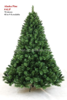 Images Of Mountain King Christmas Trees Unamon
