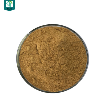 Ganoderma lucidum extract/ Ganoderma lucidum extract powder/lingzhi mushroom extract