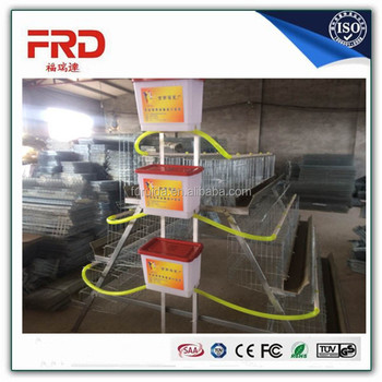 FRD-2017 New poultry cages A type laying hen chicken cages