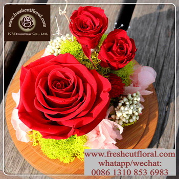 Outstanding Everlasting Preserved Flowers Exported Year Round ...