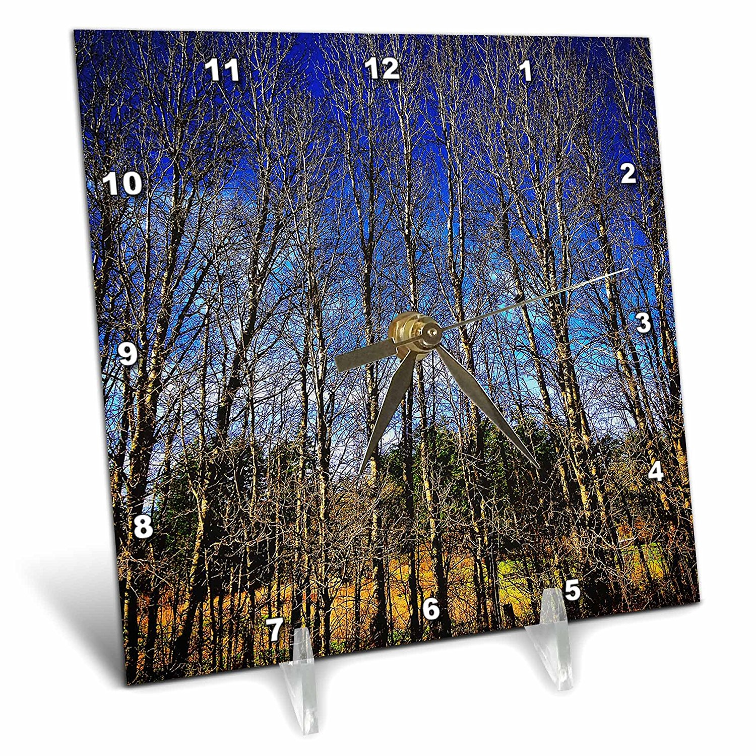 DYLAN SEIBOLD - PHOTOGRAPHY - THIN TREE STAND - 6x6 Desk Clock (dc_245711_1)