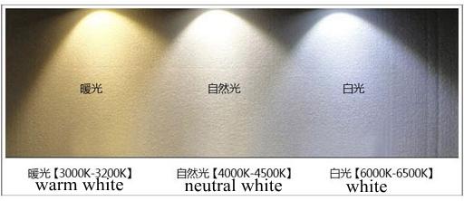 V 10 W 1 M Tubo Flexível Luzes Led Para Máquinas CNC