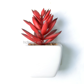 artificial desert yucca succulent plant floor plant in ceramic pot