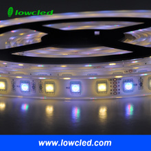 Flexible LED Strip / Strips / strip, 5m, 30 LEDs / 5050 SMD, 12V, IP68, white, warm white, red, green, blue,
