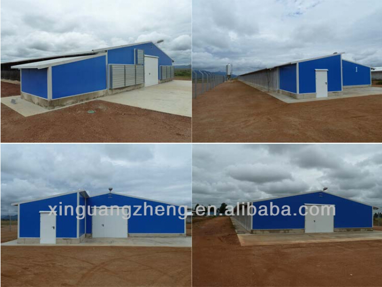 Light weight steel structure commercial chicken house for sale
