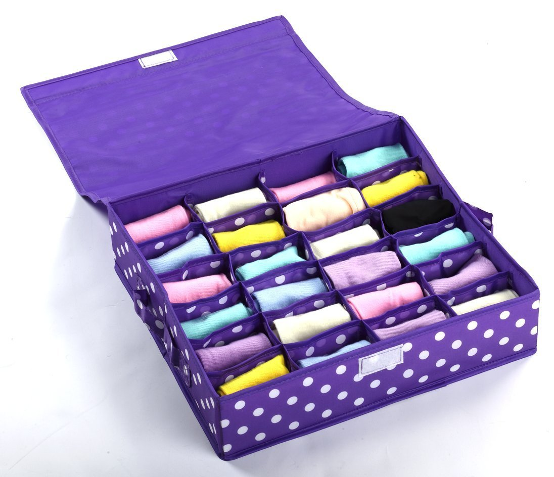 Topeva Foldable Washable Oxford Cloth Underwear Storage Box with Cover (Purple, Small)
