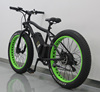 FUJIANG electric bike, electric bike conversion kit, electric snow bike with EN15194