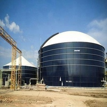 BSL China low price biogas anaerobic digester for plant sale