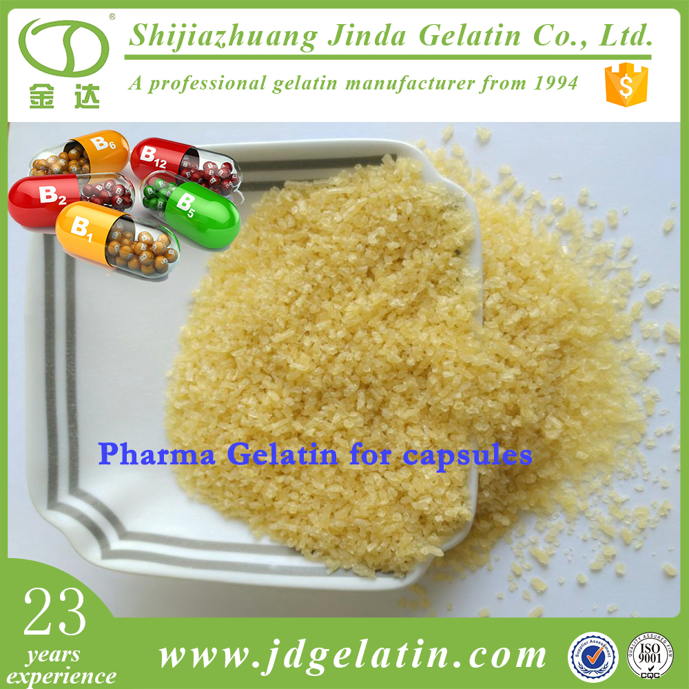 Pure Type B Pharma Gelatin Production / Medical Gelatin Powder Factory