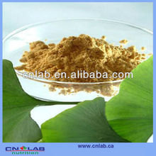 Factory price ginkgo biloba for energy 24/6