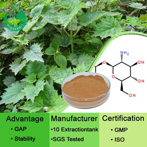 Lowder Price Nettle Extract Powder Nettle Leaf Tea