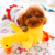 Dog Application and Stock Function Pet Toy Squeaky Duck Soft Plush Stuff Cat Toy with Crackling BB Sound Activated
