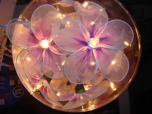 Pinky And Purple Lighting Flower