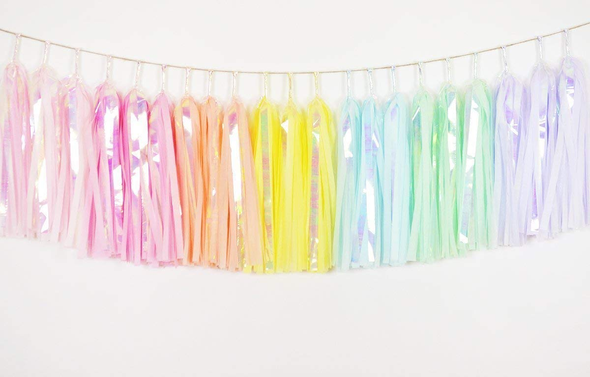 Iridescent Pastel Rainbow Tassel Garland, Rainbow Nursery Banner, Rainbow Banner, Rainbow Garland, Pastel Rainbow Unicorn, Pastel Rainbow Garland, Rainbow Birthday Garland, Rainbow Cake Smash Decor