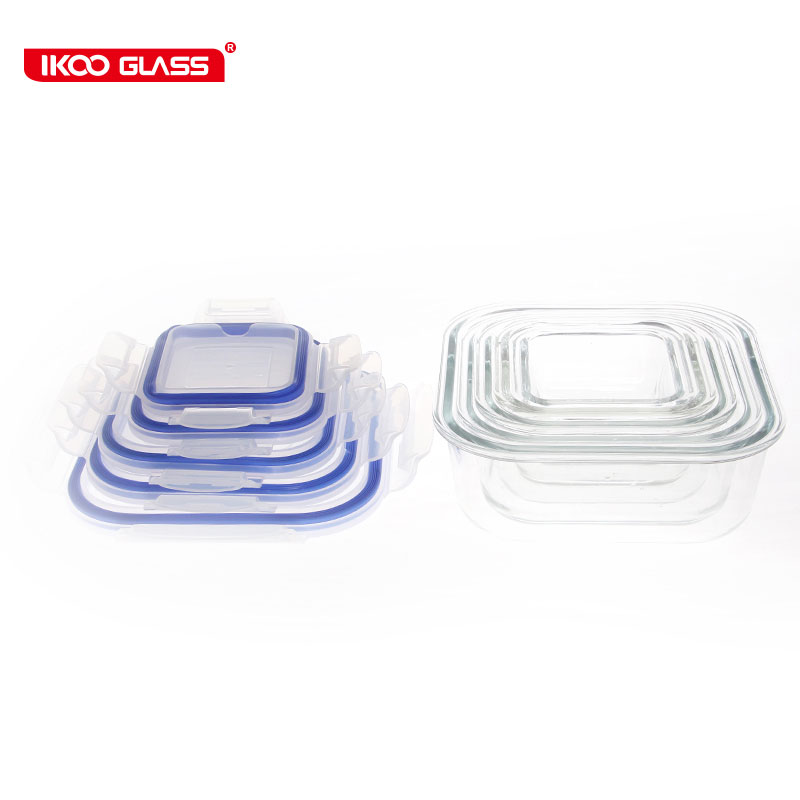 Ecofriendly glass ice pack food containers