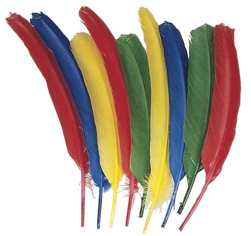 Creativity Street 4503 Quill Feathers, Assorted Colors, 24 Feathers/Pack (CKC4503)